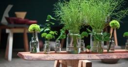 Tolle Deko-Ideen für den eigenen Garten