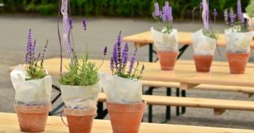 Bierzelgarnituren - das perfekte Gartenmöbel