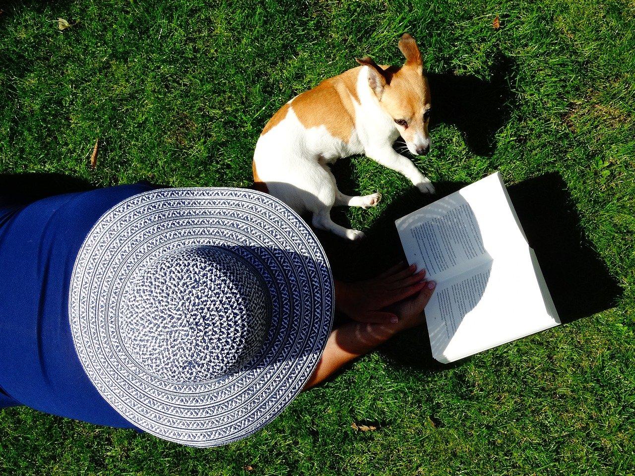 Der perfekte Schlafplatz für den Hund im Garten